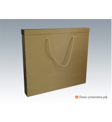 Коробка под картины А1